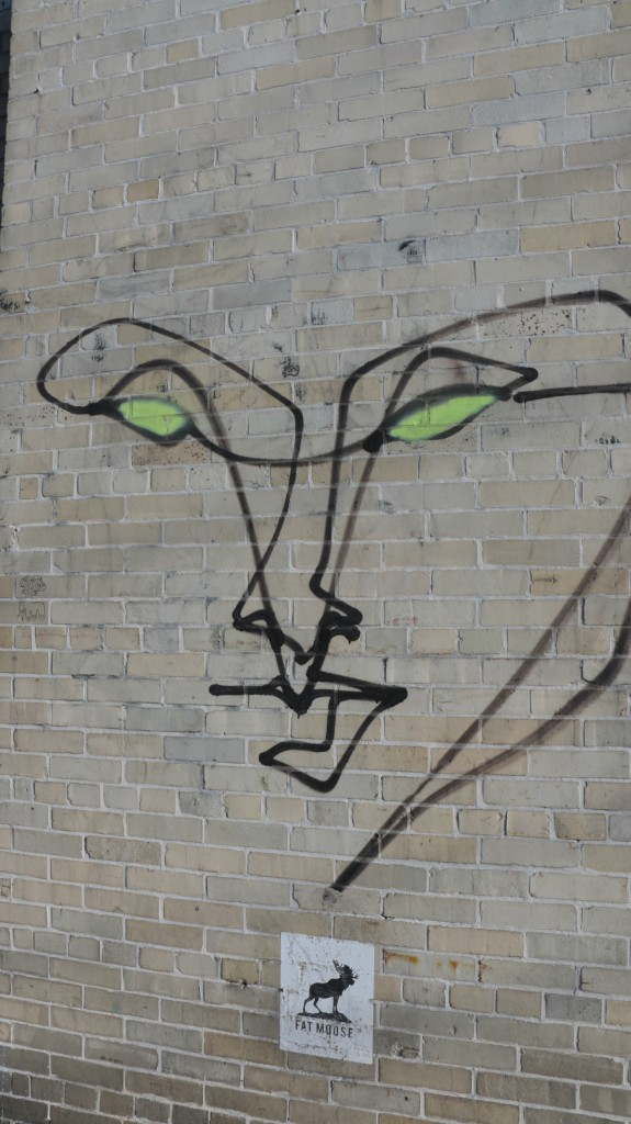 Gestalt-Graffiti-Face-Bushwick-Collective-IMG_2280